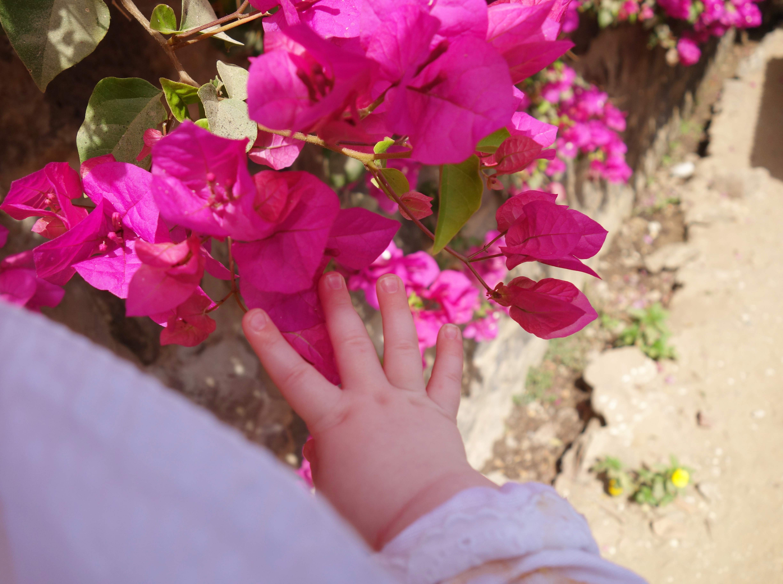 thewestend-hands